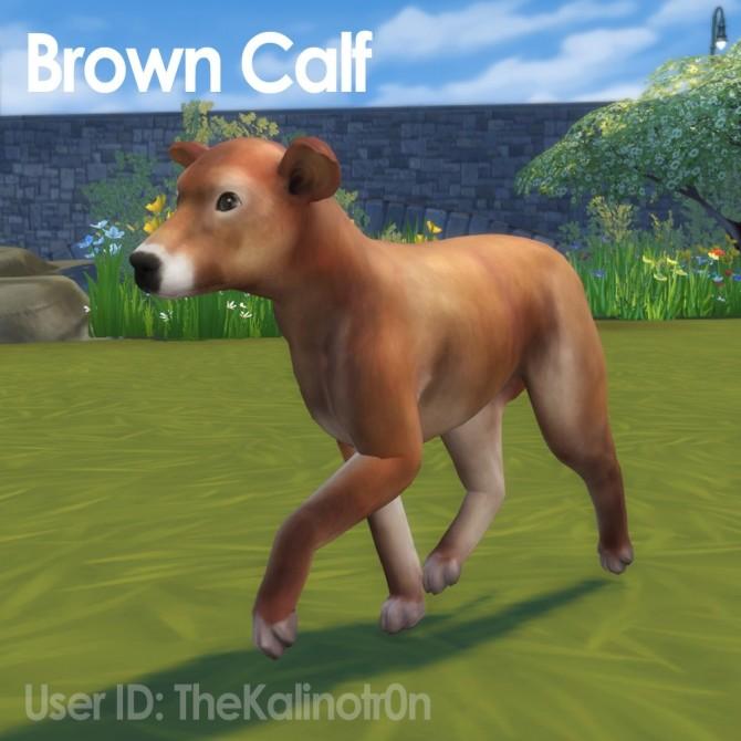 Brown Calf, Gazelle and Koala at Kalino image 626 670x670 Sims 4 Updates