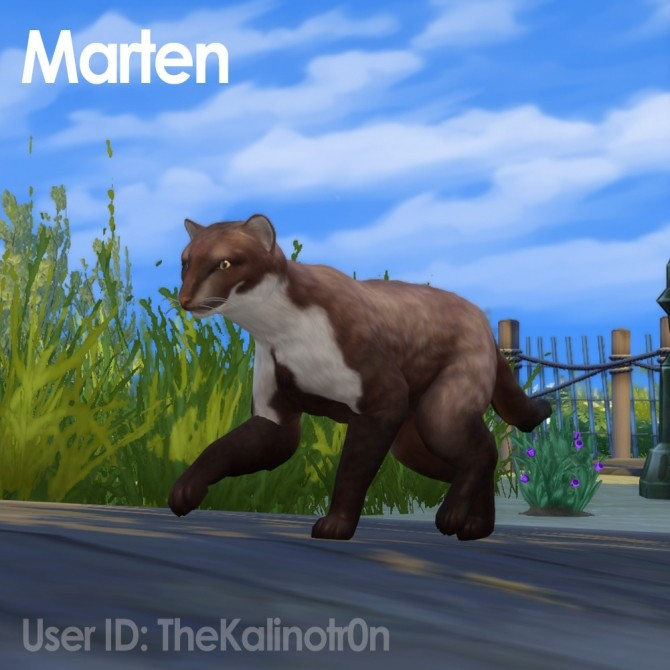 Sims 4 Puma, Black Panther, Marten, Arctic Fox, Baby Boar and Wolf at Kalino