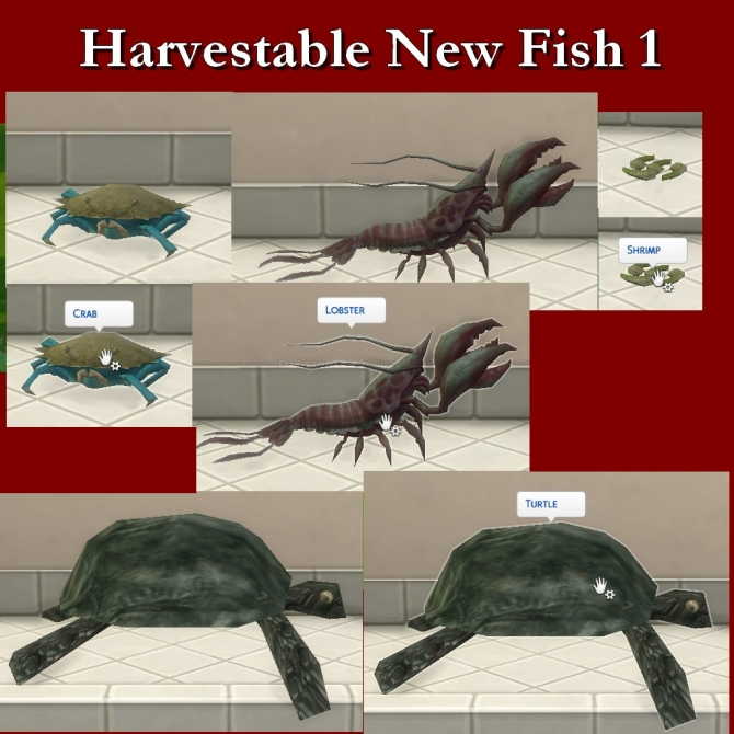 Harvestable new fish by leniad at simsworkshop sims 4 for Sims 4 fishing