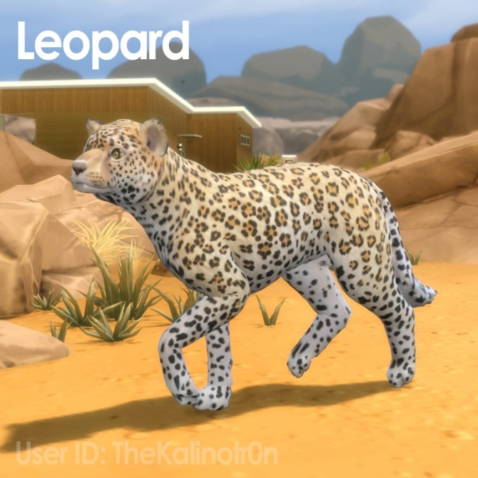 Sims 4 Snow Leopard, Leopard, Fallow Deer, Deer and White Tiger at Kalino