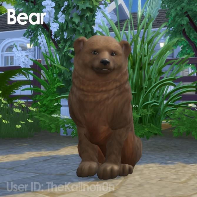 Cheetah, Desert Fox, Jackal, Red Panda, Lion, Bear, Polar Bear, Badger and Tiger at Kalino image 936 670x670 Sims 4 Updates