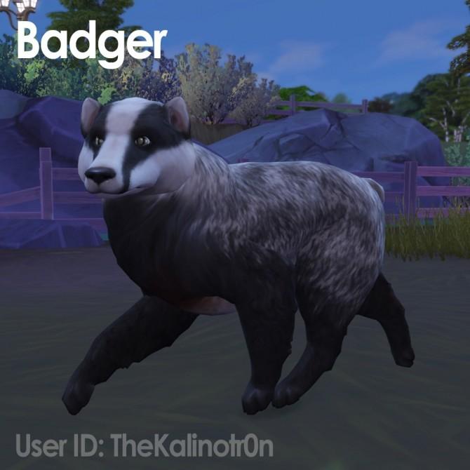 Cheetah, Desert Fox, Jackal, Red Panda, Lion, Bear, Polar Bear, Badger and Tiger at Kalino image 956 670x670 Sims 4 Updates