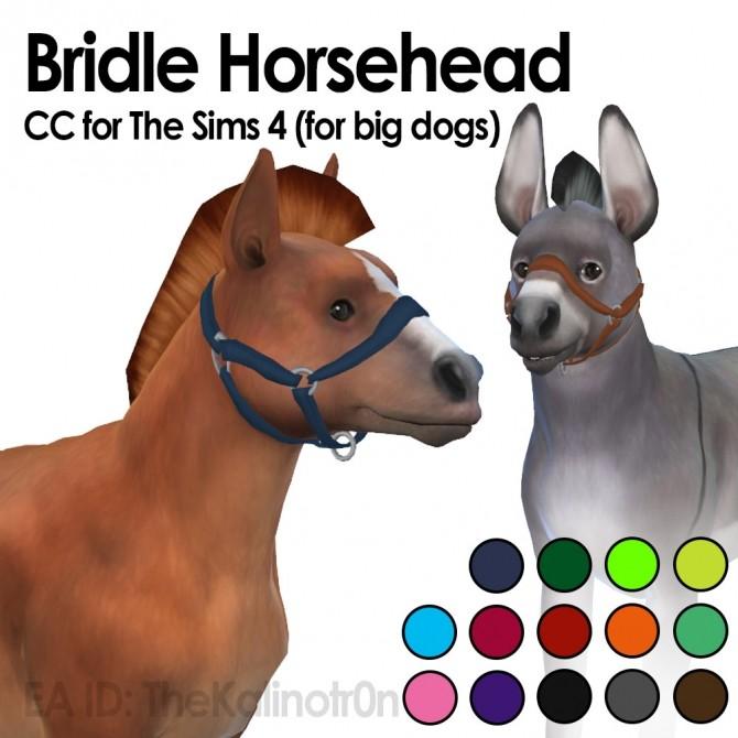 Bridles horse head at Kalino image 122 670x670 Sims 4 Updates