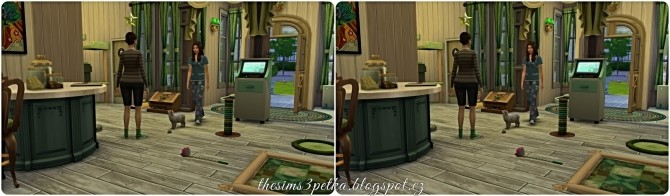 Bonheur des Animaux Veterinary clinic at Petka Falcora image 13011 670x196 Sims 4 Updates