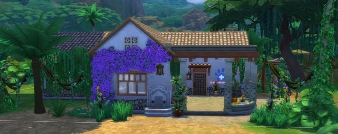 Sims 4 Tropical veterinary at Kalino