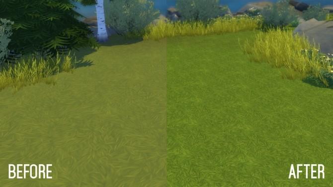 Brindleton Bay Grassland Overhaul Default Replacement Grass at Simsational Designs image 1932 670x377 Sims 4 Updates