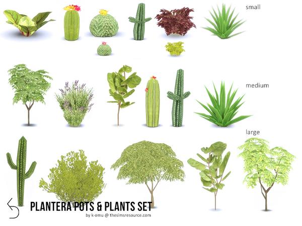 Sims 4 PLANTERA plant set by k omu at TSR