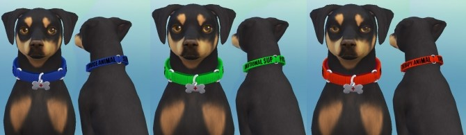 Service Dog Collars for Small Dogs by EmilitaRabbit at Mod The Sims image 4415 670x195 Sims 4 Updates