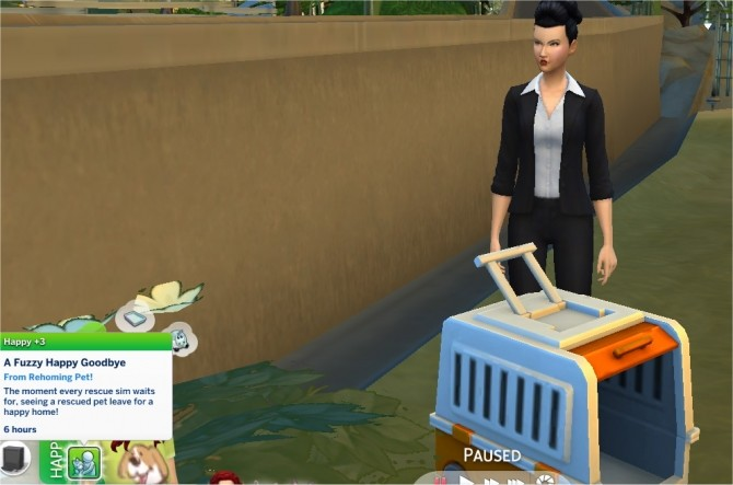 Animal Rescue Mod and Career by PurpleThistles at Mod The Sims image 459 670x443 Sims 4 Updates