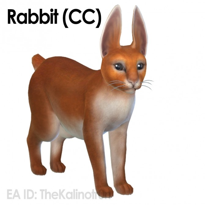 Rabbit and CC for your cats at Kalino image 6126 670x670 Sims 4 Updates