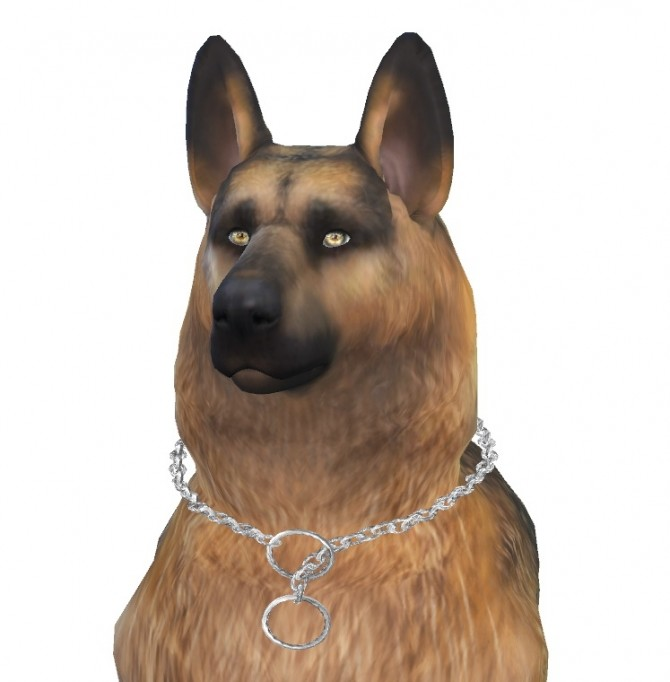 Bruce the German Shepherd dog at Enchanting Essence image 6317 670x682 Sims 4 Updates