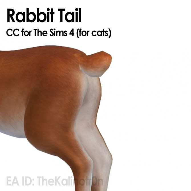 Rabbit and CC for your cats at Kalino image 6322 670x670 Sims 4 Updates