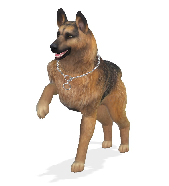 Bruce the German Shepherd dog at Enchanting Essence image 6417 Sims 4 Updates