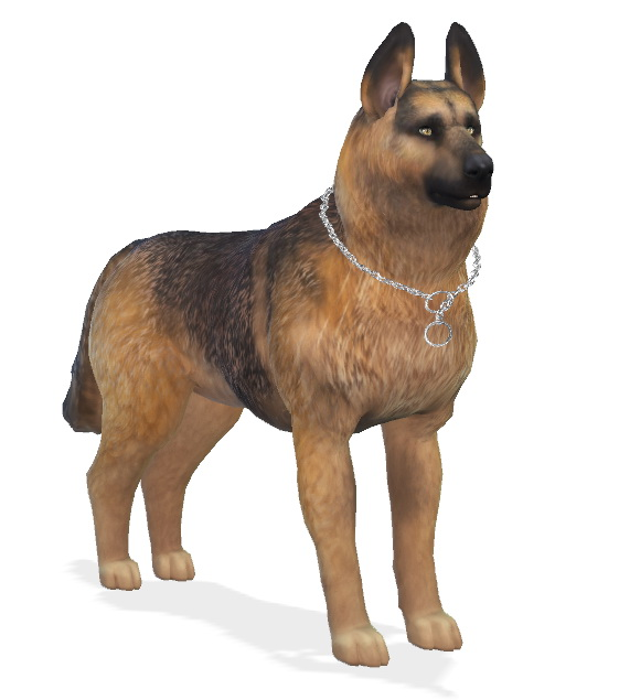 Bruce the German Shepherd dog at Enchanting Essence image 6516 Sims 4 Updates
