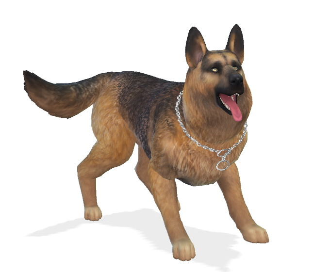 Bruce the German Shepherd dog at Enchanting Essence image 6817 Sims 4 Updates