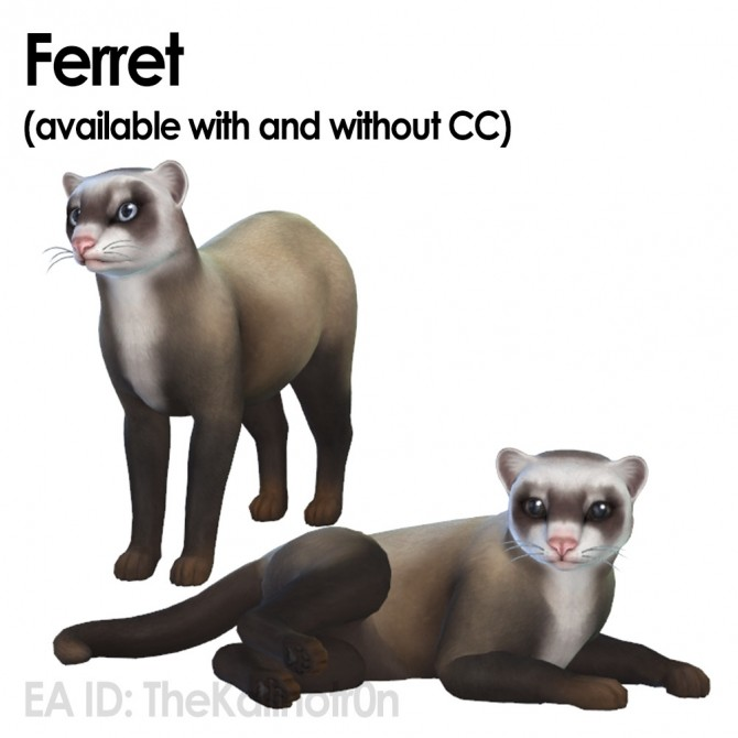 Ferret, Aardwolf, African Wild Dog and Hyena at Kalino image 6822 670x670 Sims 4 Updates