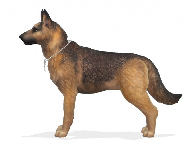 Bruce the German Shepherd dog at Enchanting Essence image 6916 670x505 Sims 4 Updates