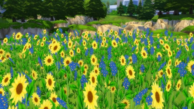 Early Spring Fields of Wildflowers by Snowhaze at Mod The Sims image 95 670x377 Sims 4 Updates