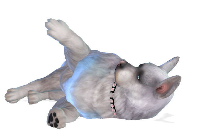 Fai dog at Enchanting Essence image 1385 Sims 4 Updates