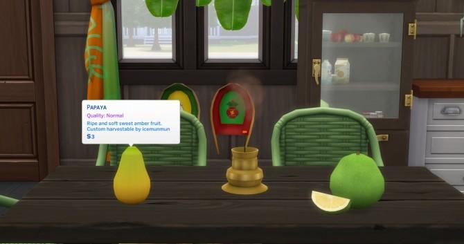 Harvestable Papaya & Pomelo by icemunmun at Mod The Sims image 4111 670x353 Sims 4 Updates