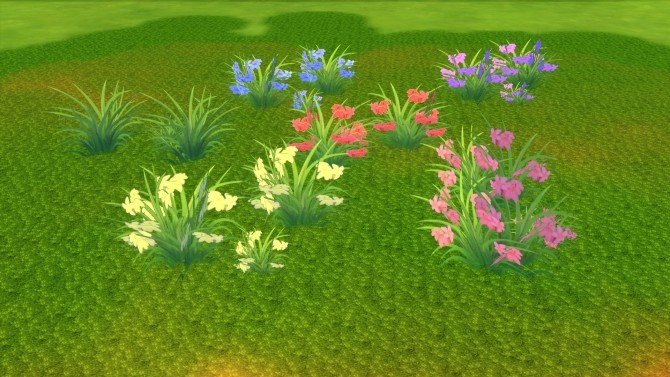 Brilliance Gardens III: Colorful Grasses by Snowhaze at Mod The Sims image 479 670x377 Sims 4 Updates
