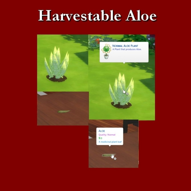 Harvestable Aloe by Leniad at SimsWorkshop image 7212 670x670 Sims 4 Updates