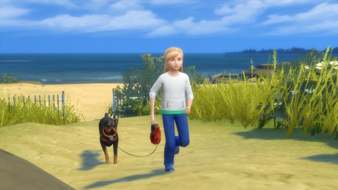 Sims 4 Children Can Walk With Dogs at MSQ Sims