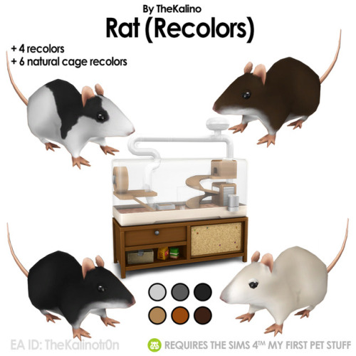 Rat recolors at Kalino image 986 Sims 4 Updates