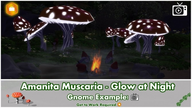 Amanita Muscaria Glow at Night by Bakie at Mod The Sims image 10211 670x377 Sims 4 Updates