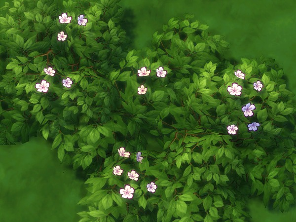 Low Lying Pale Yellow Flowers Set 2 Recolor by texxasrose at TSR image 1946 Sims 4 Updates