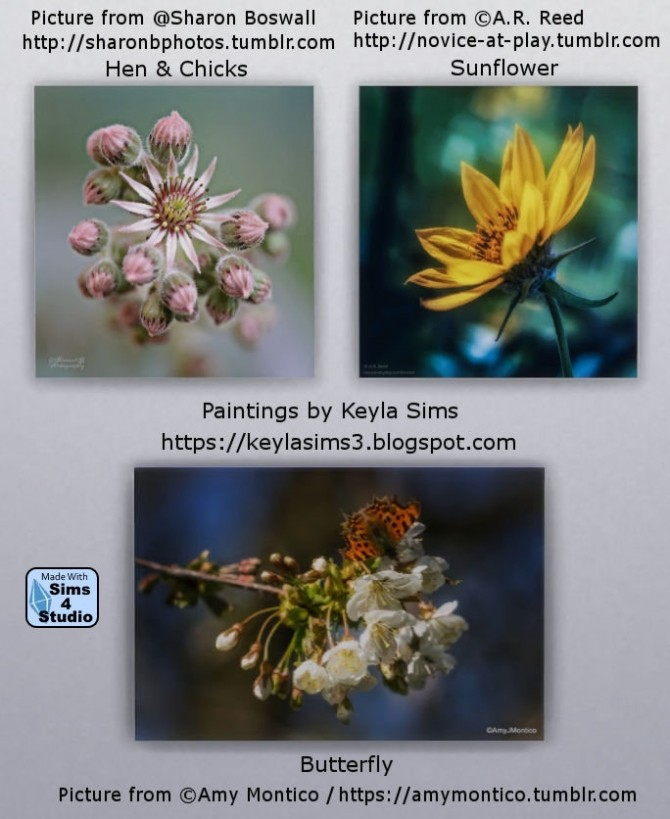 Paintings: Different photographers at Keyla Sims image 6110 670x819 Sims 4 Updates