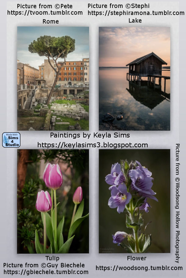 Paintings: Different photographers at Keyla Sims image 626 Sims 4 Updates
