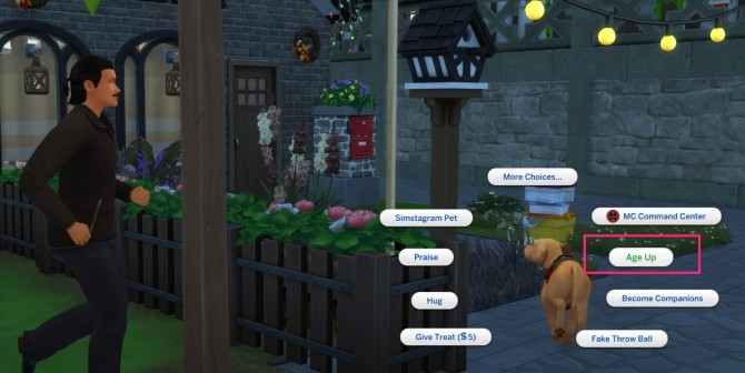 Pet Themed Holiday Traditions by icemunmun at Mod The Sims image 1884 670x336 Sims 4 Updates