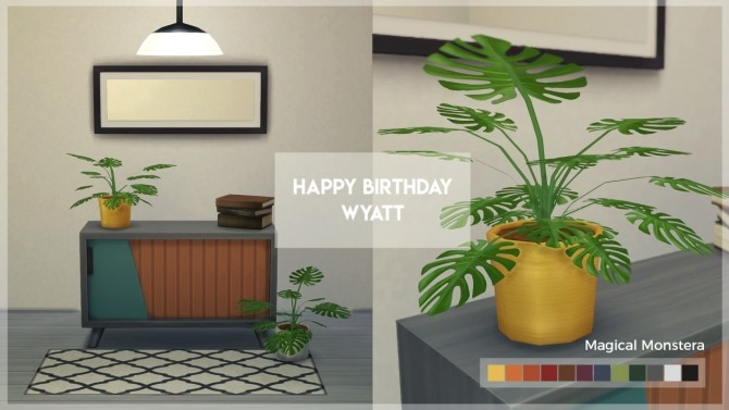 Sims 4 Happy Birthday Wyatt set at The Plumbob Tea Society
