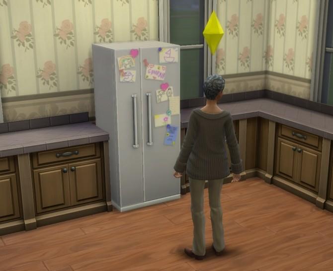 Grandmas Fridge by BadeLavellan at Mod The Sims image 123 670x546 Sims 4 Updates