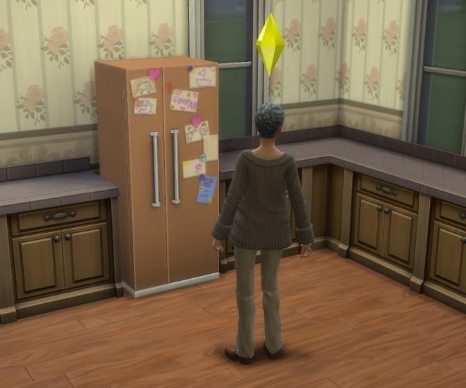 Grandmas Fridge by BadeLavellan at Mod The Sims image 124 670x558 Sims 4 Updates