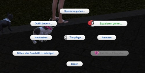 Sims 4 Go for a walk with more Pets (Rabbitholes) at LittleMsSam