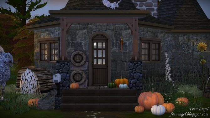 Sims 4 Hagrids Hut at Frau Engel