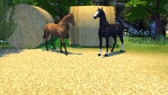 Farm and Orchard III Gold and Alfalfa Green Hay, Terrain Paints by Snowhaze at Mod The Sims image 1361 670x377 Sims 4 Updates