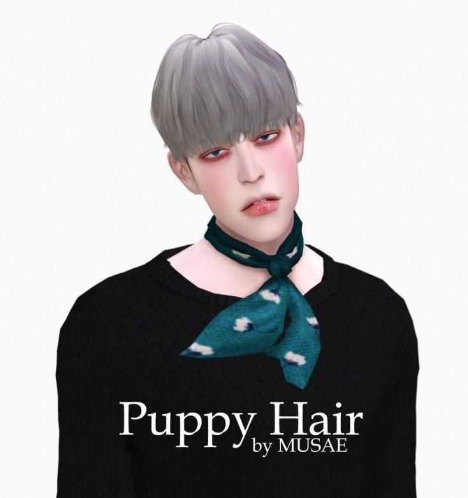 Sims 4 Puppy Hair at EFFIE