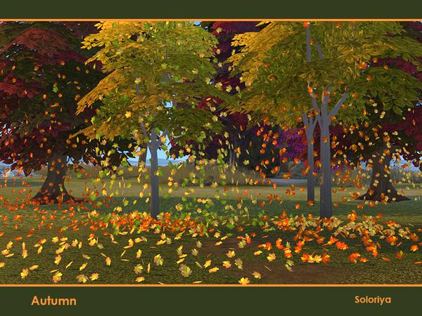 Sims 4 Autumn decorative set by soloriya at TSR