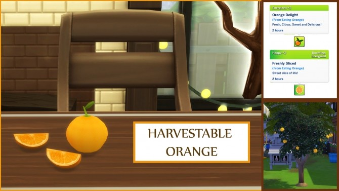 Harvestable Orange by icemunmun at Mod The Sims image 471 670x377 Sims 4 Updates