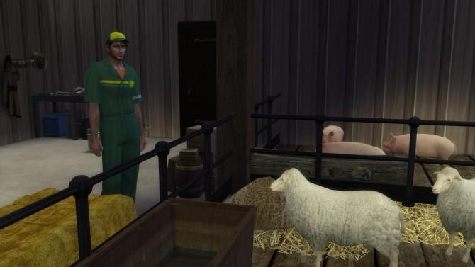 The Farm at Alial Sim image 986 670x377 Sims 4 Updates
