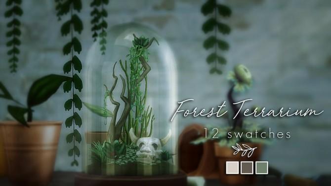 Forest Terrarium at Magnolian Farewell image 79 670x377 Sims 4 Updates