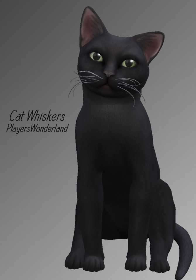 Cat whiskers at PW's Creations image 11120 670x958 Sims 4 Updates