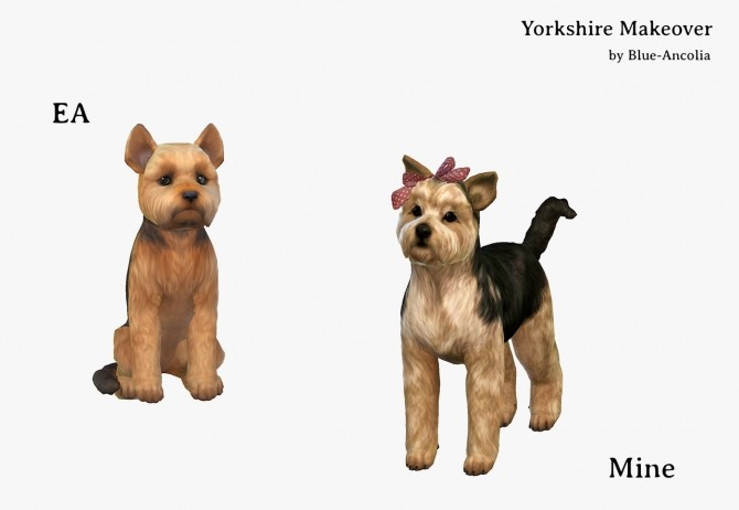 Sims 4 Yorkshire Terrier Makeover at Blue Ancolia