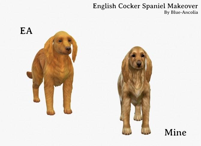 Sims 4 English Coker Spaniel Makeover at Blue Ancolia