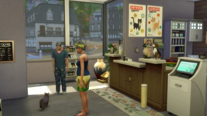 Sims 4 Animal dock clinic by SundaySims at Sims Artists