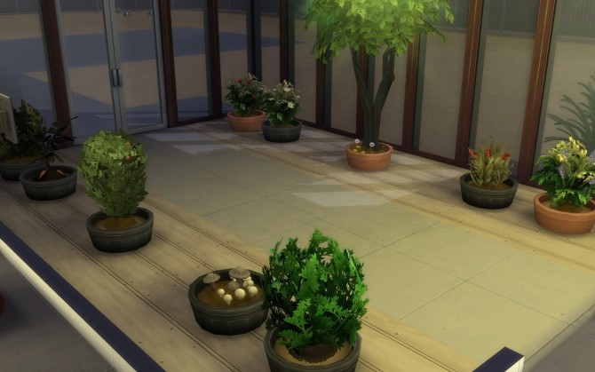 Scientist Career Graveyard Shift and Gardening Fix by gettp at Mod The Sims image 6413 670x419 Sims 4 Updates