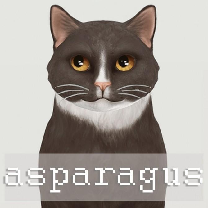Cat dump 2.0 at cowplant pizza image 1193 670x670 Sims 4 Updates
